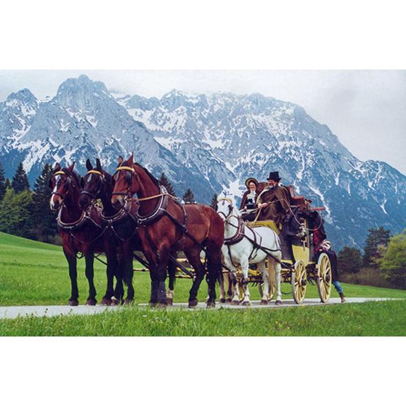 Urlaub mit Kutsche im Allgäu (5 Tage)